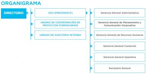 "Orfila se autotituló ""CEO"" en el organigrama oficial de la empresa estatal."