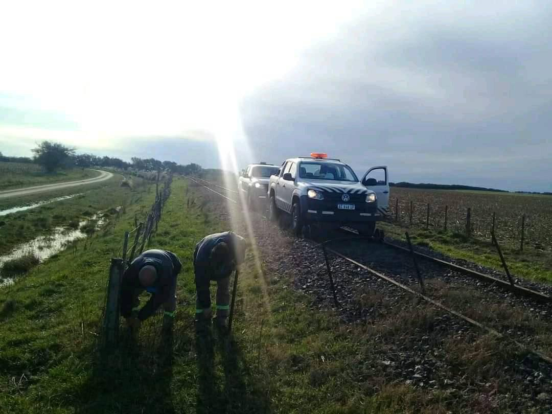 Analizan la vuelta del tren a Pinamar | enelSubte.com